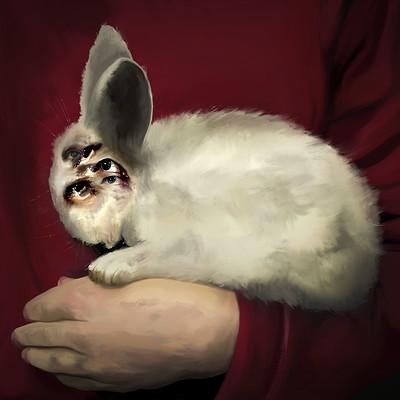 Kim jakobsson pink rabbits