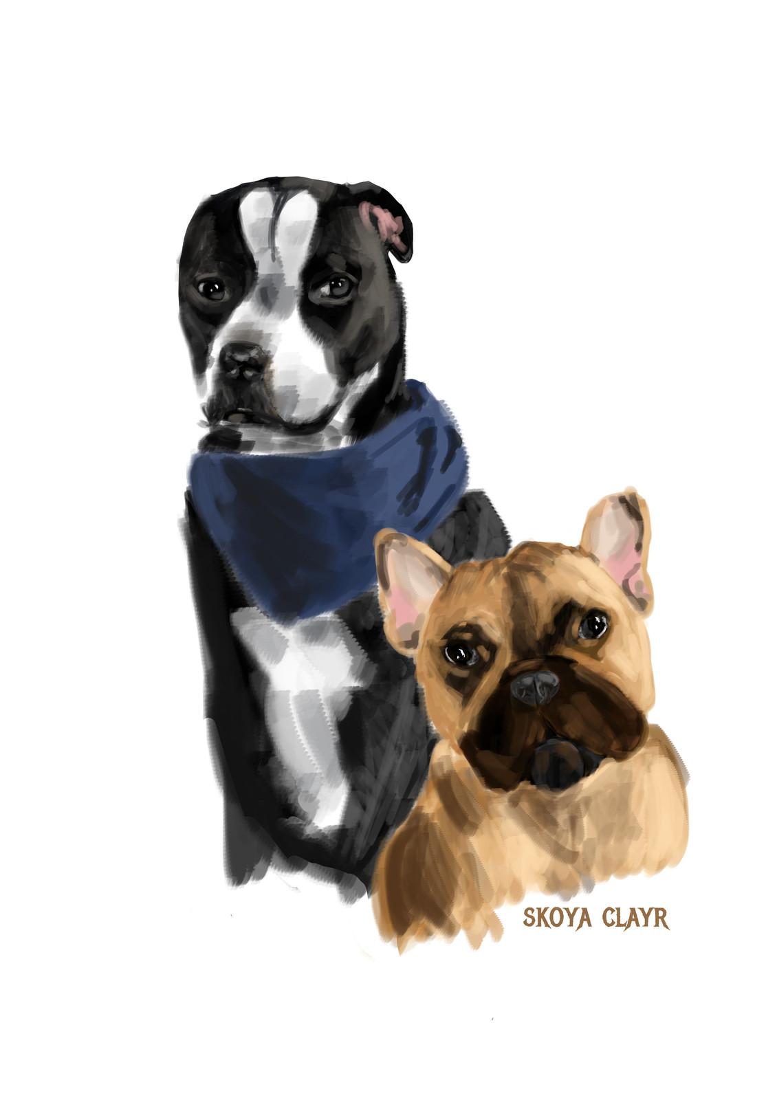 Best Doggos