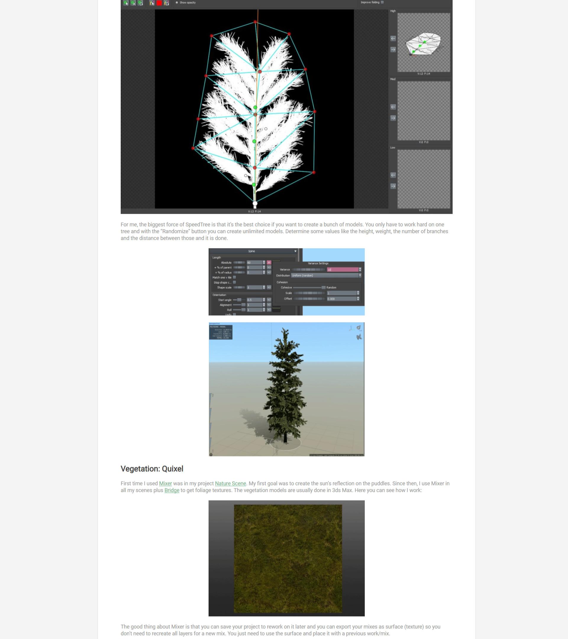 ArtStation - Natural Scenes with SpeedTree & Quixel Mixer