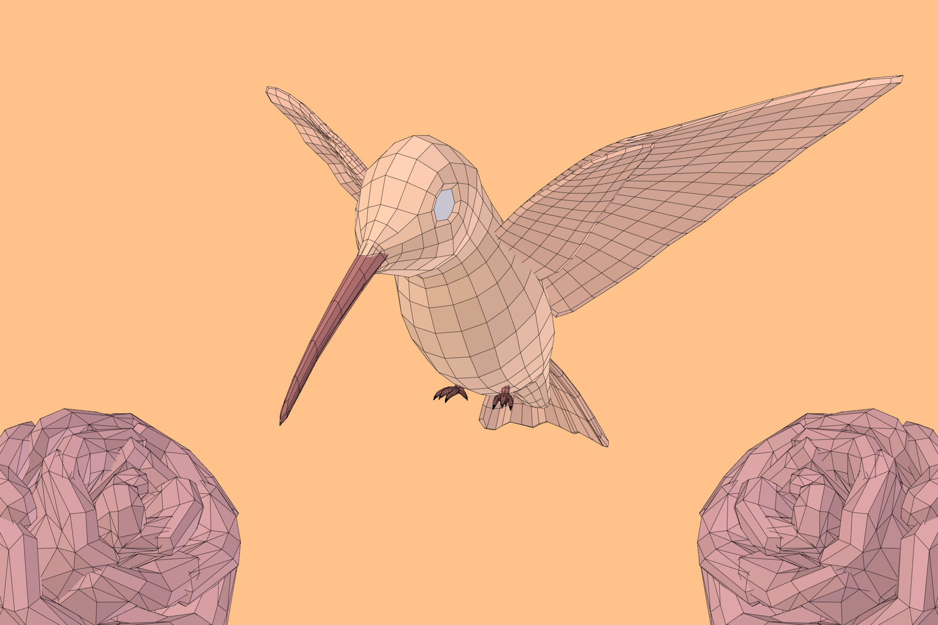Matias garate hummingbird wireframe
