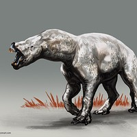ArtStation - Sorry to Bother You Creature Design , Brynn