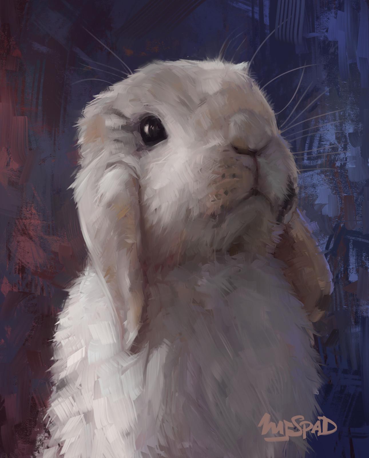 Bunny Portrait Comission