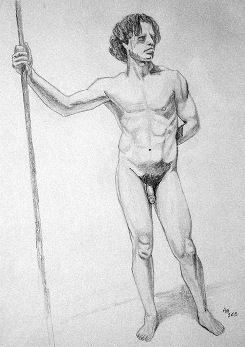 Torso Anatomy Study