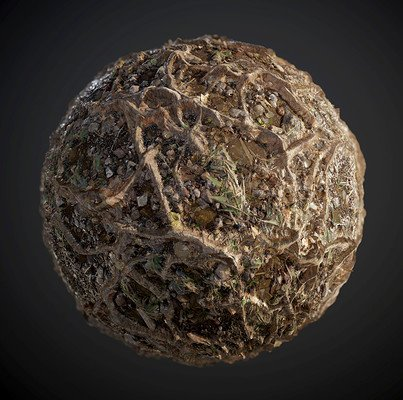 Ground Tree Roots Seamless PBR Texture