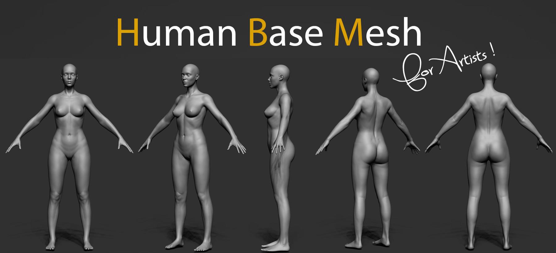 Pascal ackermann human bm img5