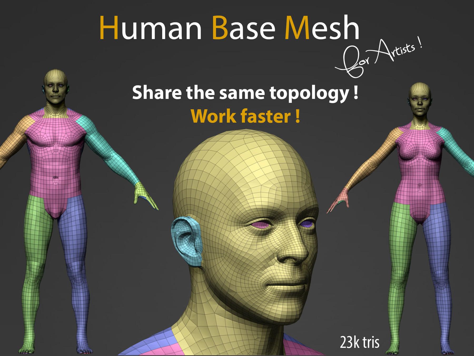 Pascal ackermann human bm img1