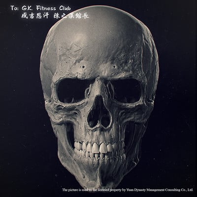Ivan mityaev skull front lp