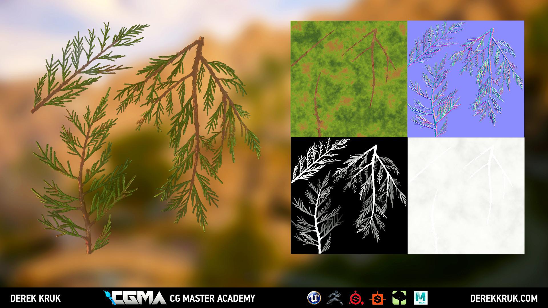 Derek kruk cypress