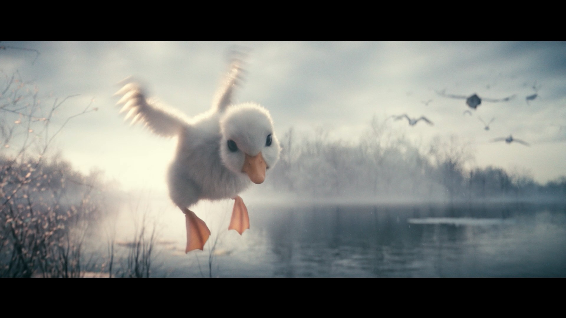 Quentin chaillet disneyduck 60s hd uk mp4 snapshot 00 31 2018 12 31 18 55 17
