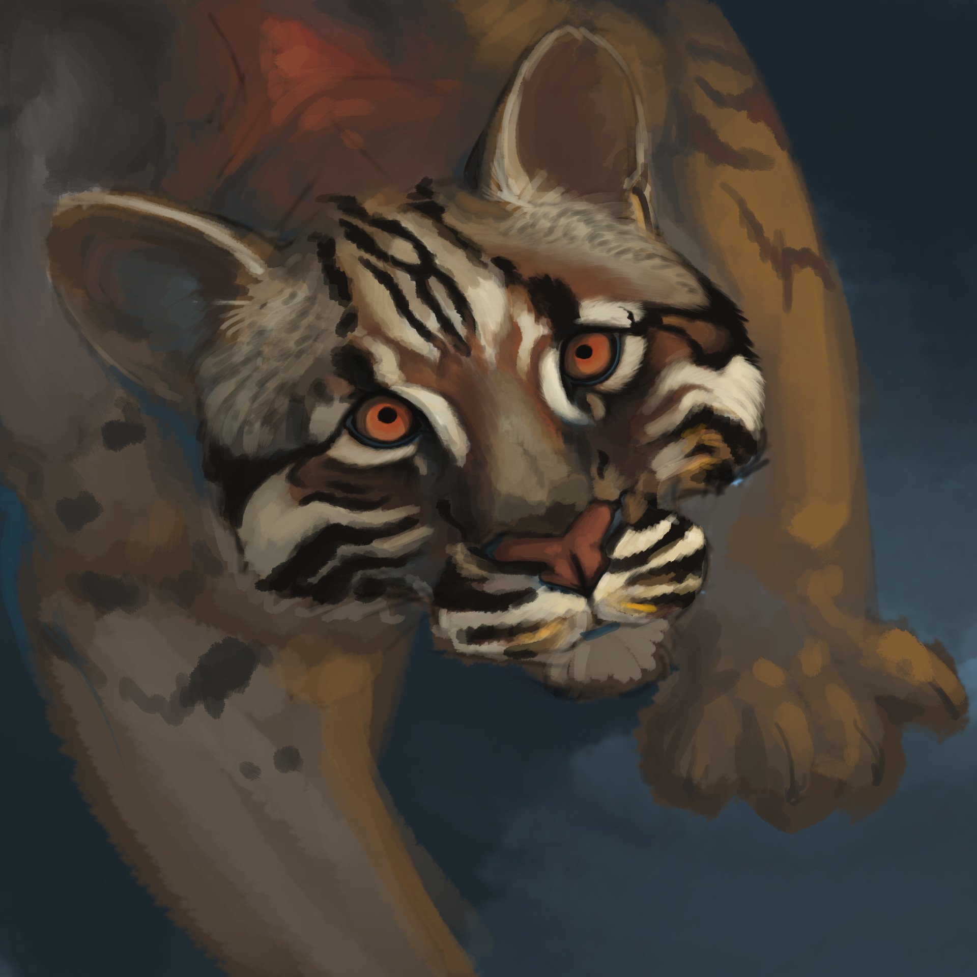 Meagen ruttan asianleopardcat meagenruttan 002