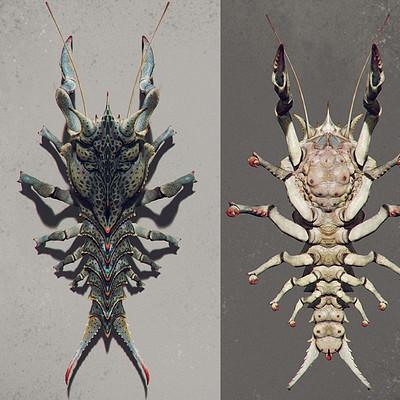 Einar martinsen crab week 04 color 01