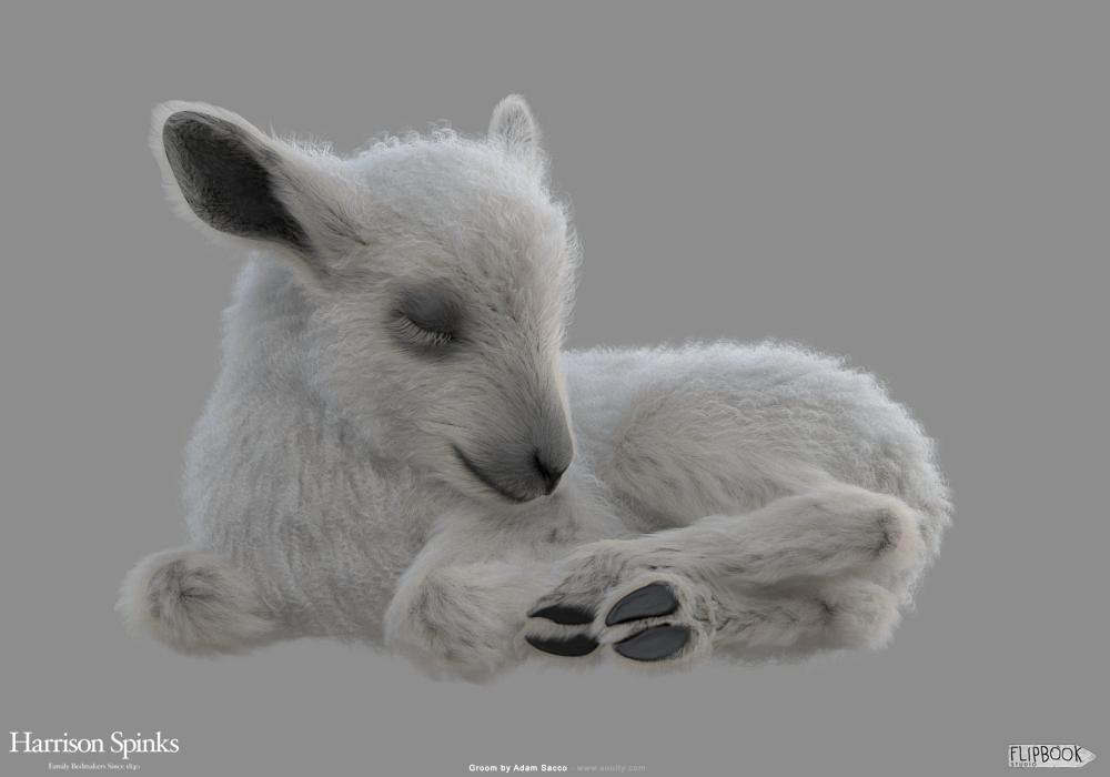 Adam sacco lamb baby groom 0002