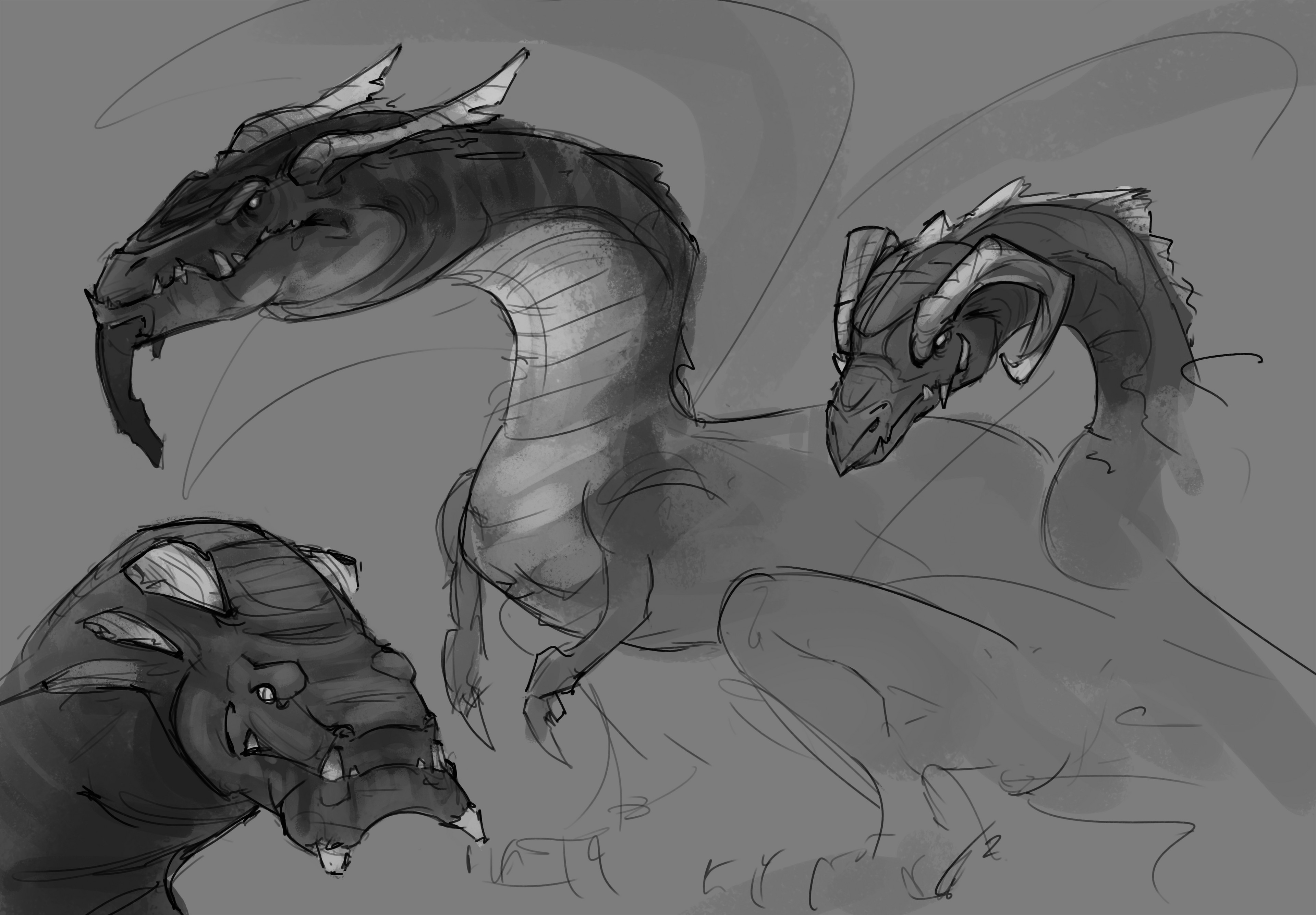 Ideation sketches for dragon character.