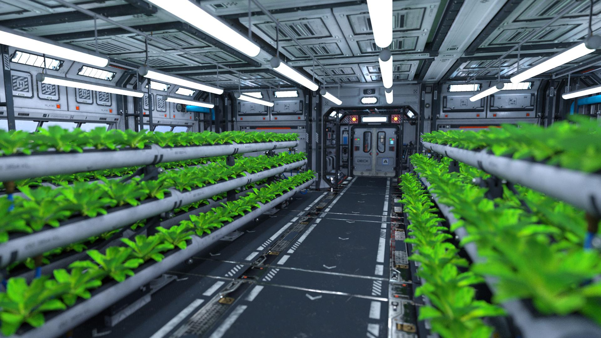 Joel lovell hydroponics room