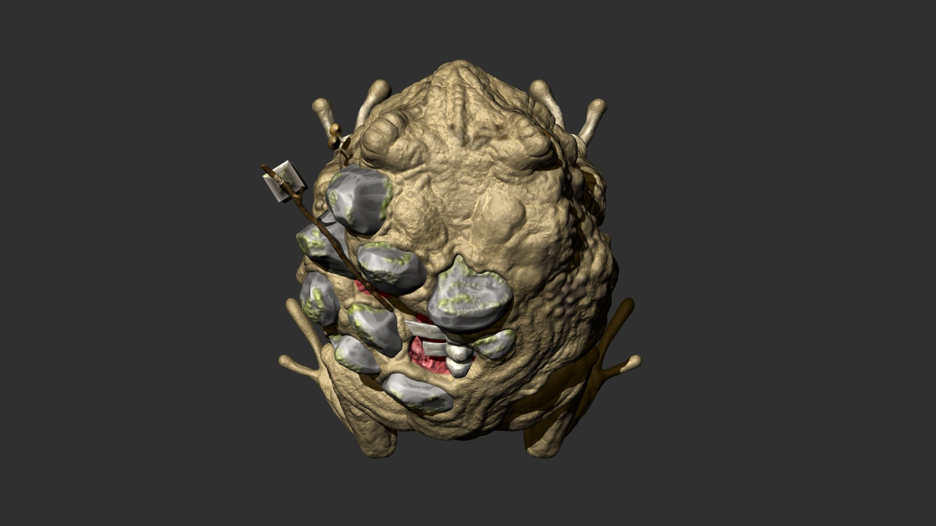 zbrush top view