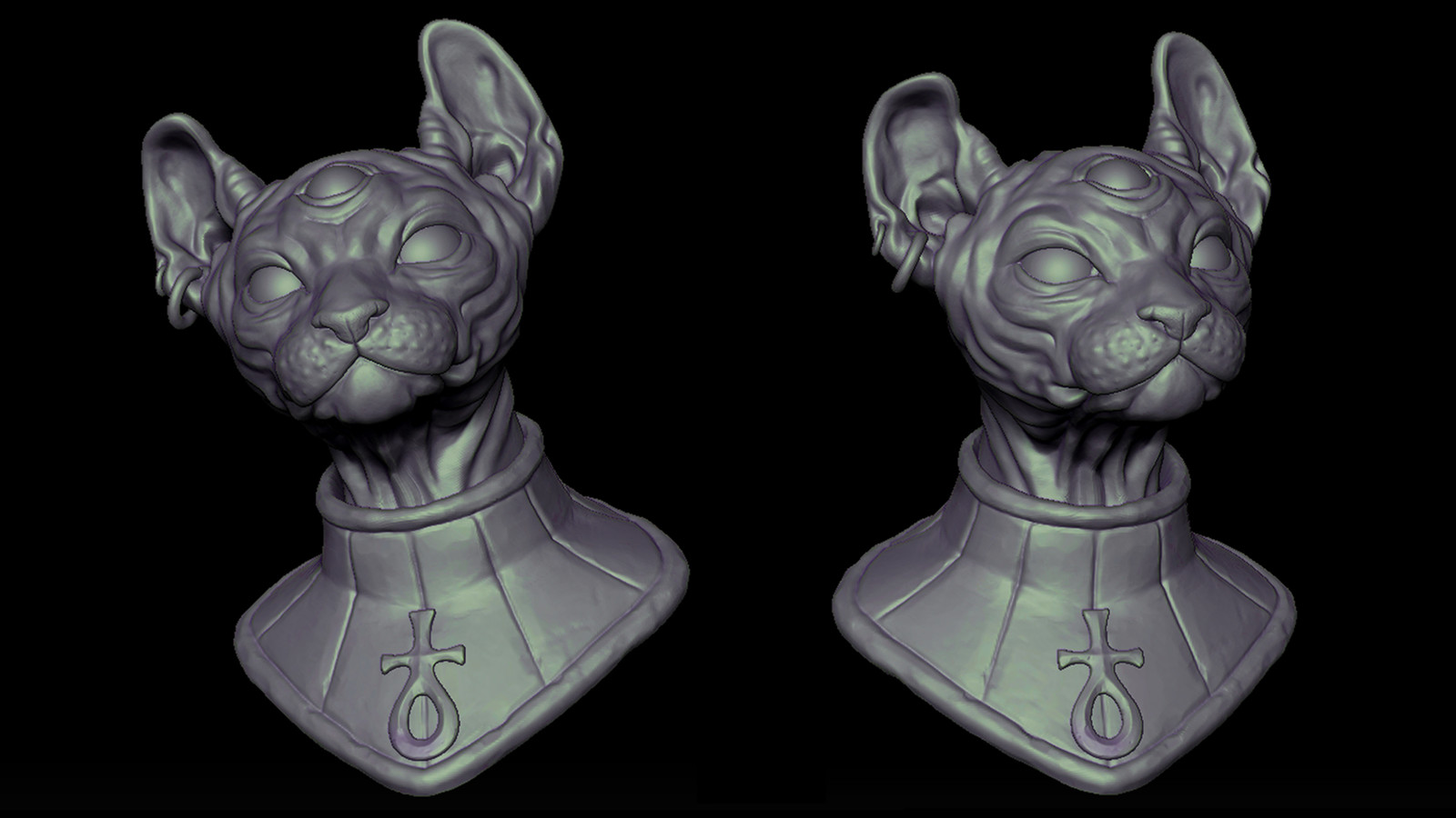 Egyptian three eyed donskoy cat