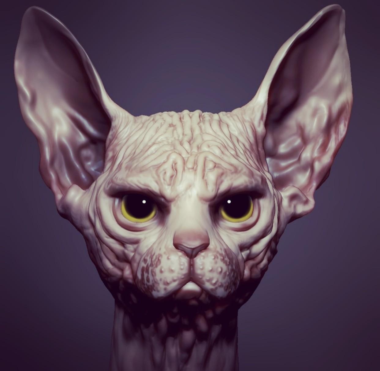 Taking up the sculptityourself Feline challenge by Rafael Grassetti -WIP
