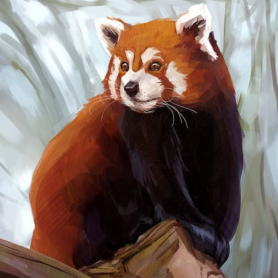 Madeleine bellwoar madeleineink red panda as