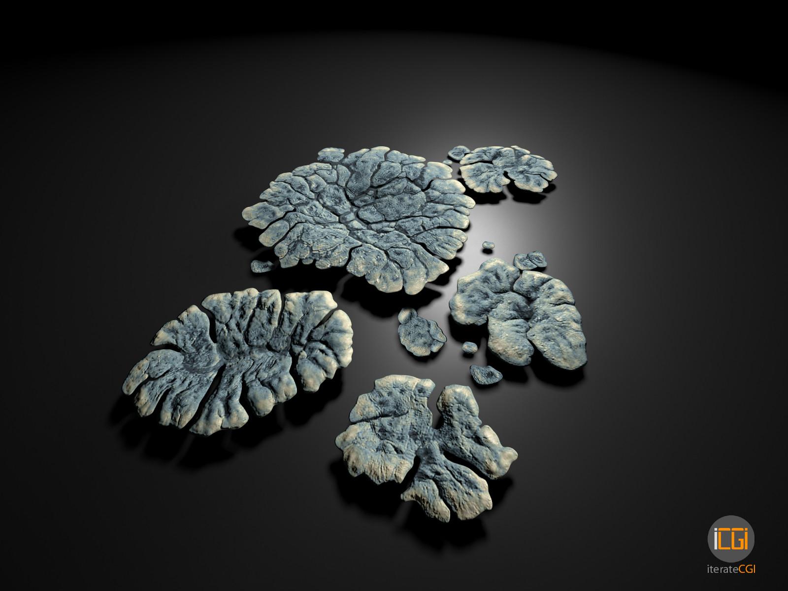 Alien Plant Lichen Type 1