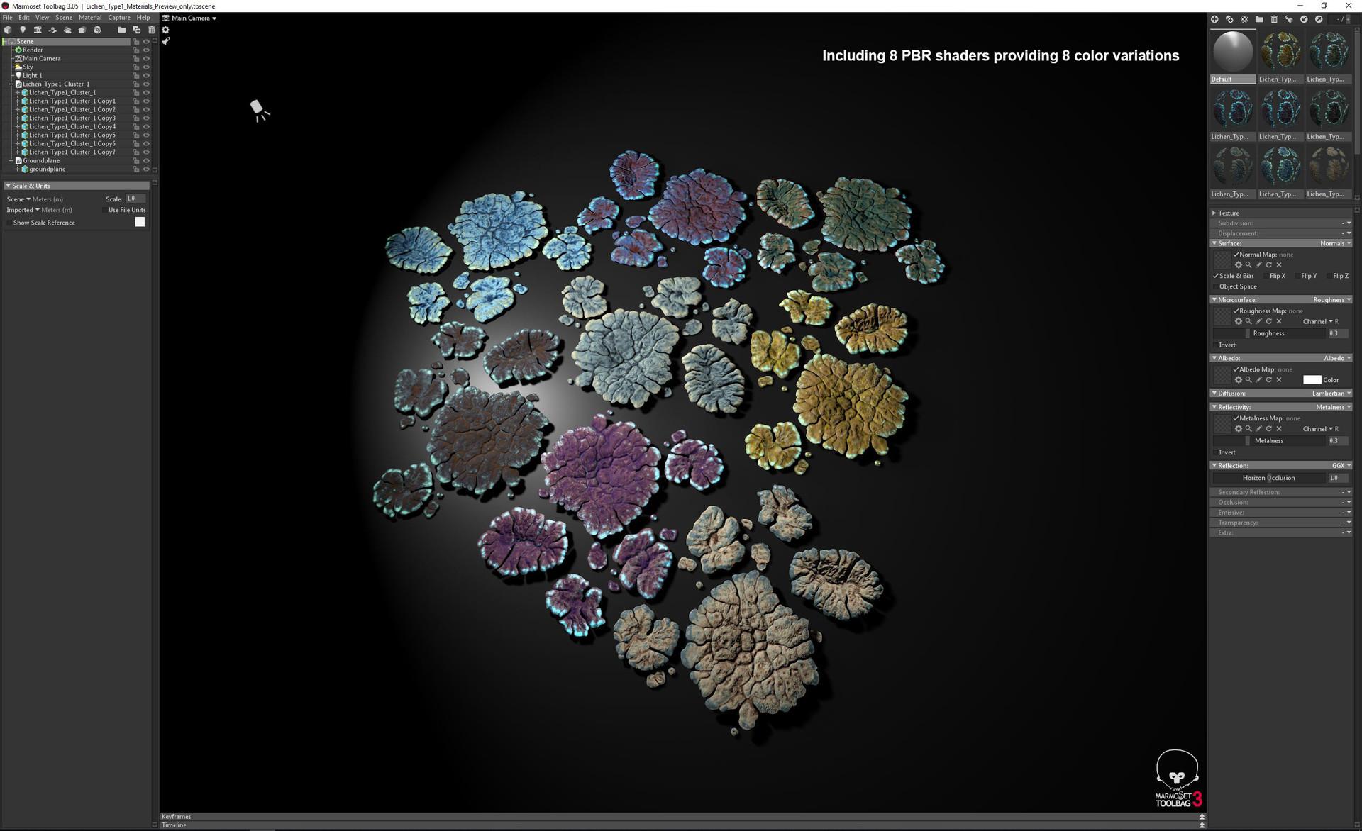 Johan de leenheer lichen type1 marmoset preview2