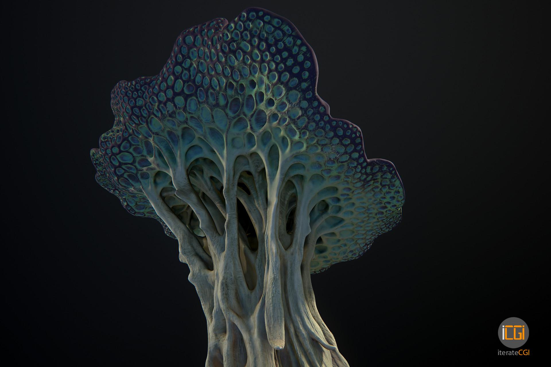 Johan de leenheer alien plant mushroom type2 11