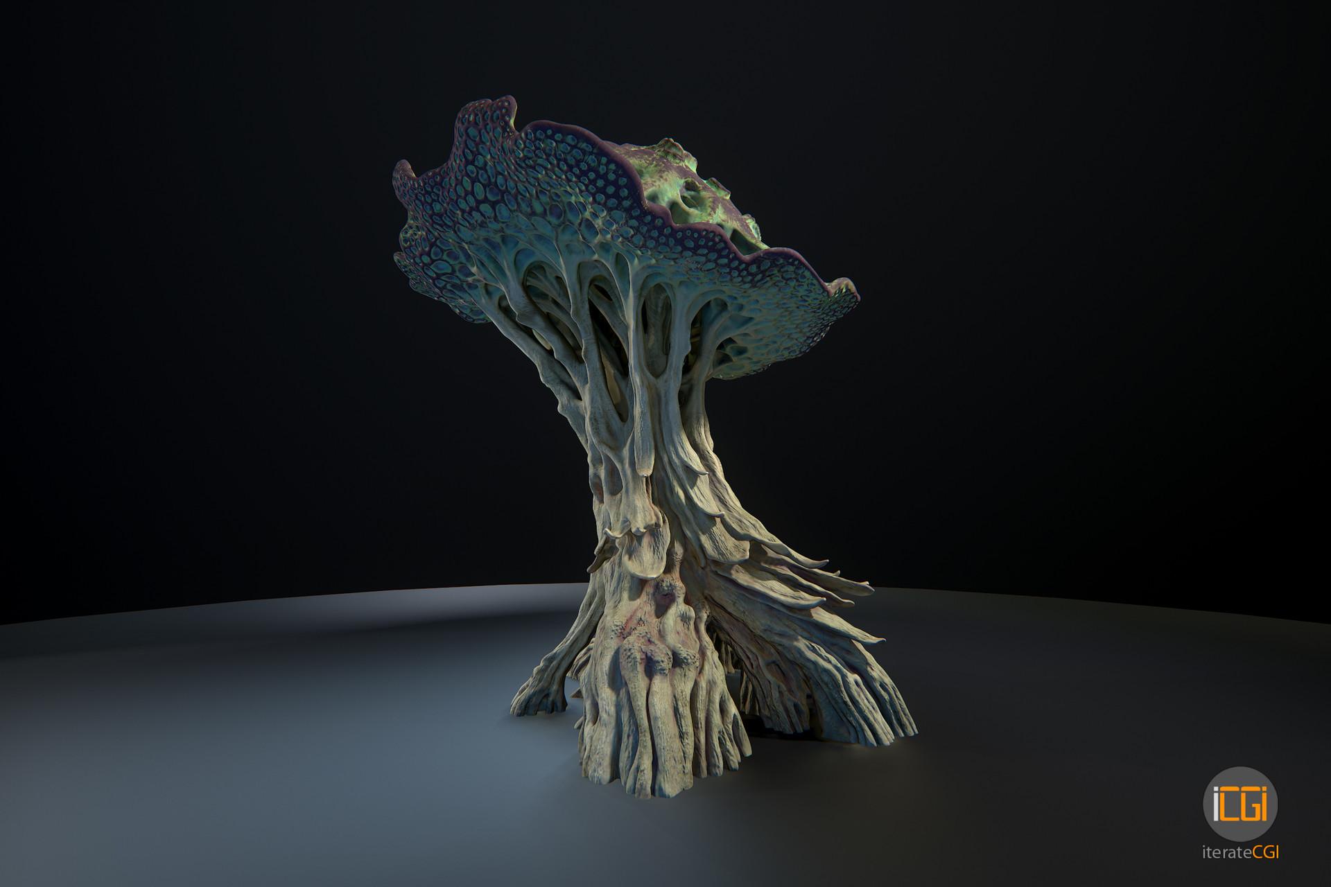 Johan de leenheer alien plant mushroom type2 6