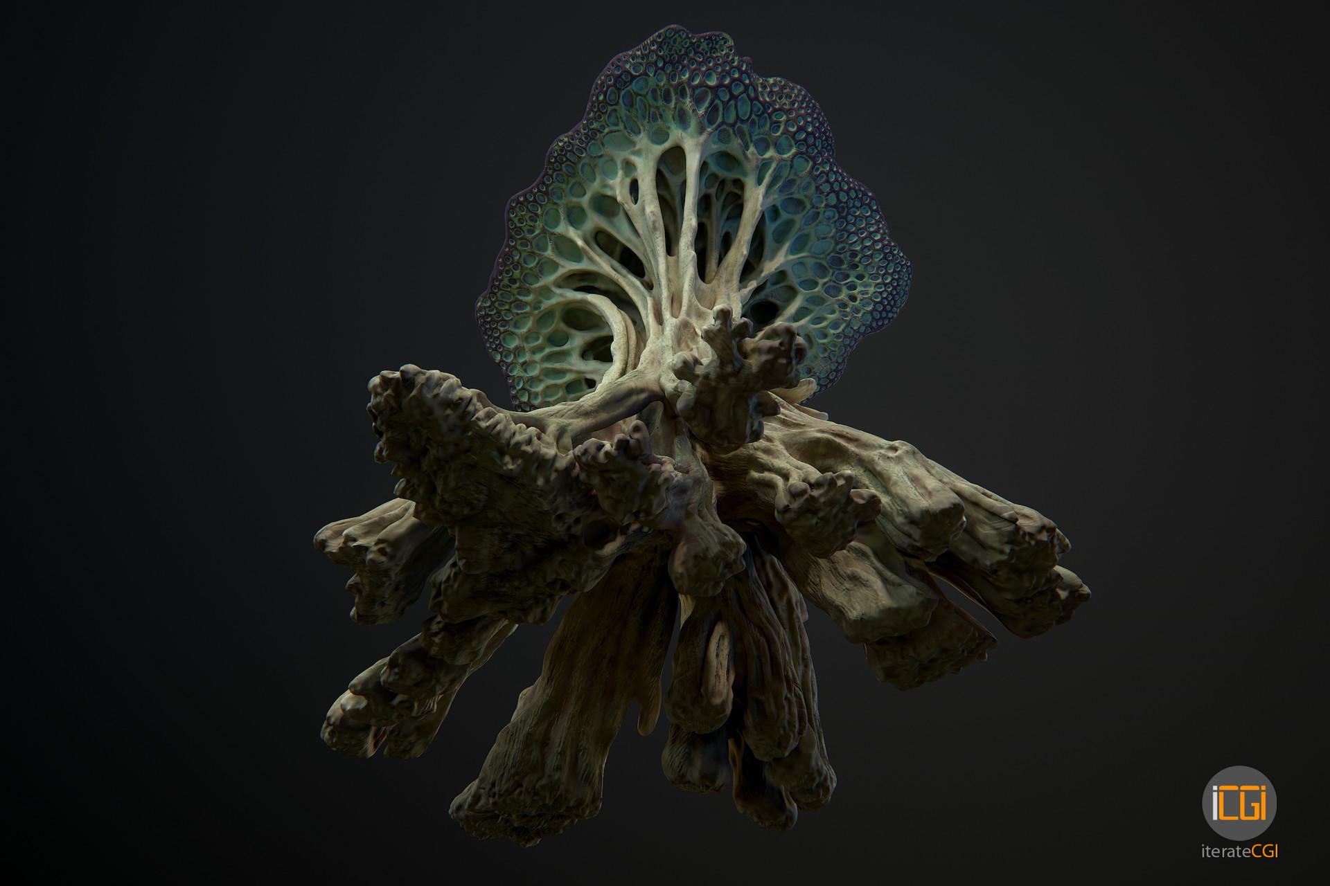 Johan de leenheer alien plant mushroom type2 28