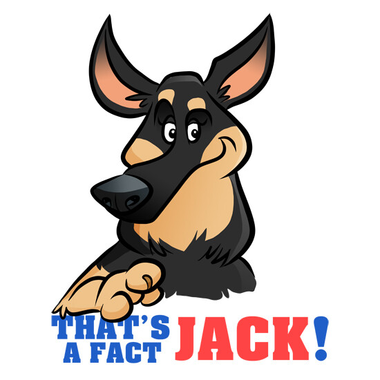 Steve rampton jack