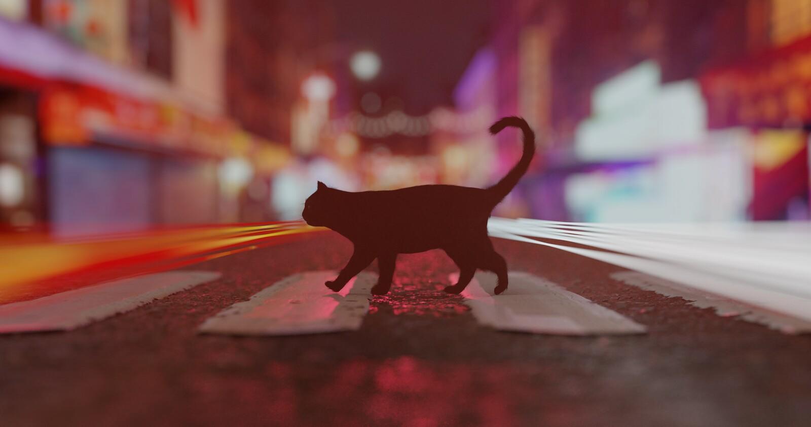 Cat walking on road (original heavy DOF version)