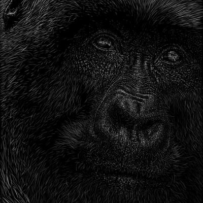 Patrik roy mammal v1 0 1131x1600px