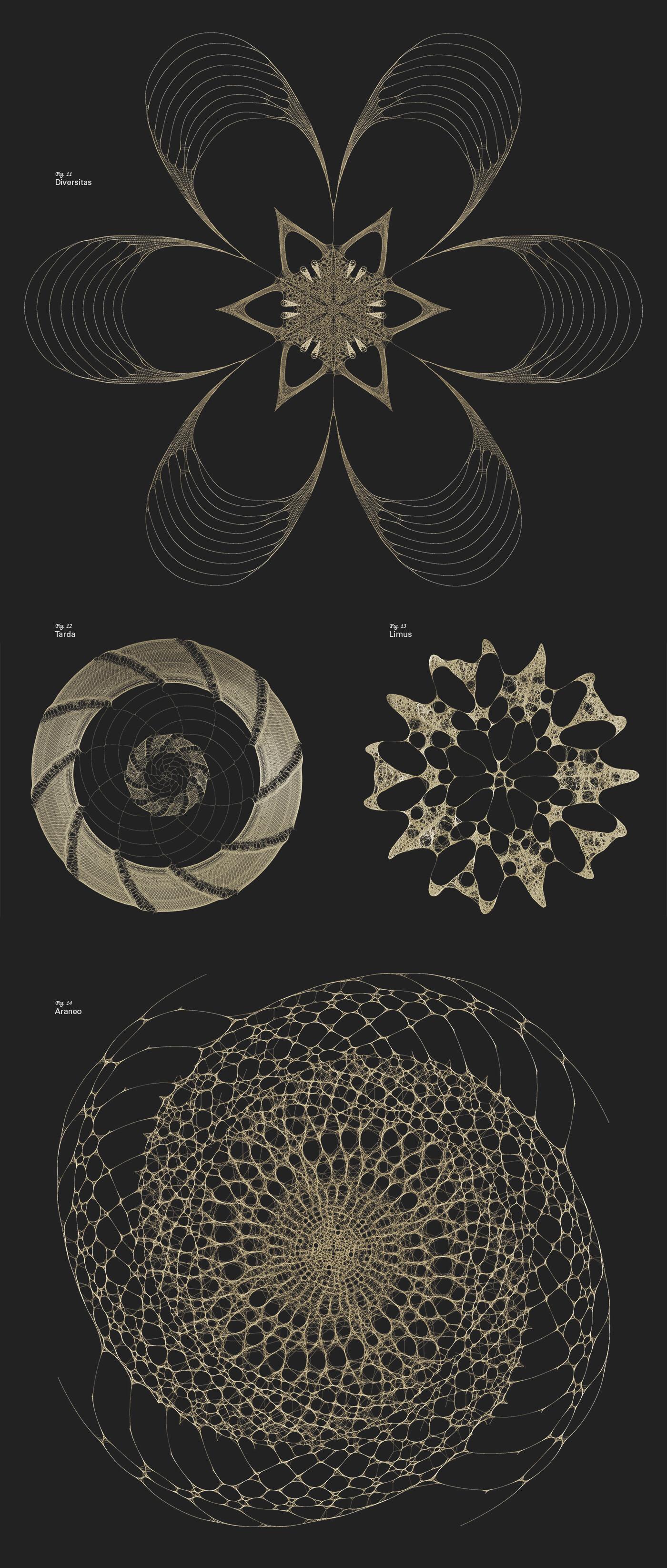 Roman tikhonov site case fibonacci1400 03 rev