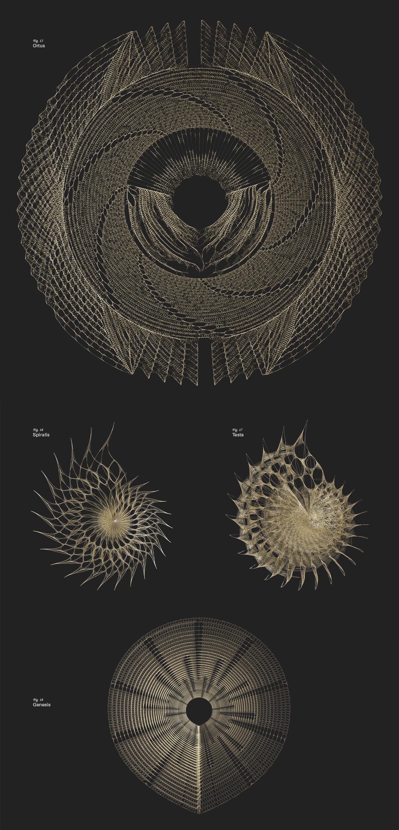 Roman tikhonov site case fibonacci1400 04 rev