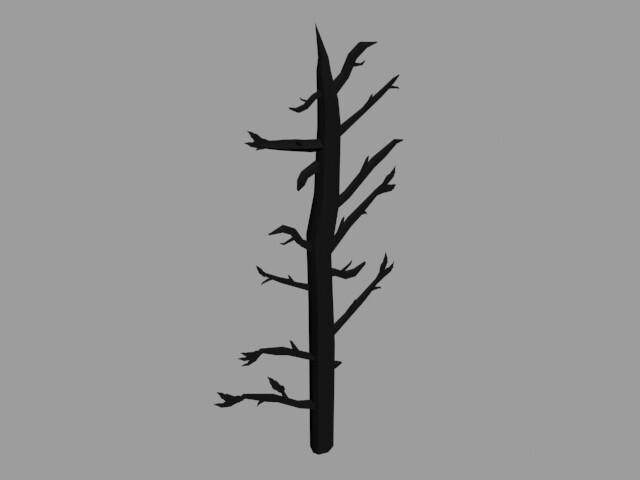 Tree: Side