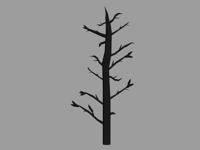 Tree: Front