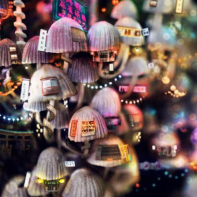 Barbora urbankova neon kyoto2