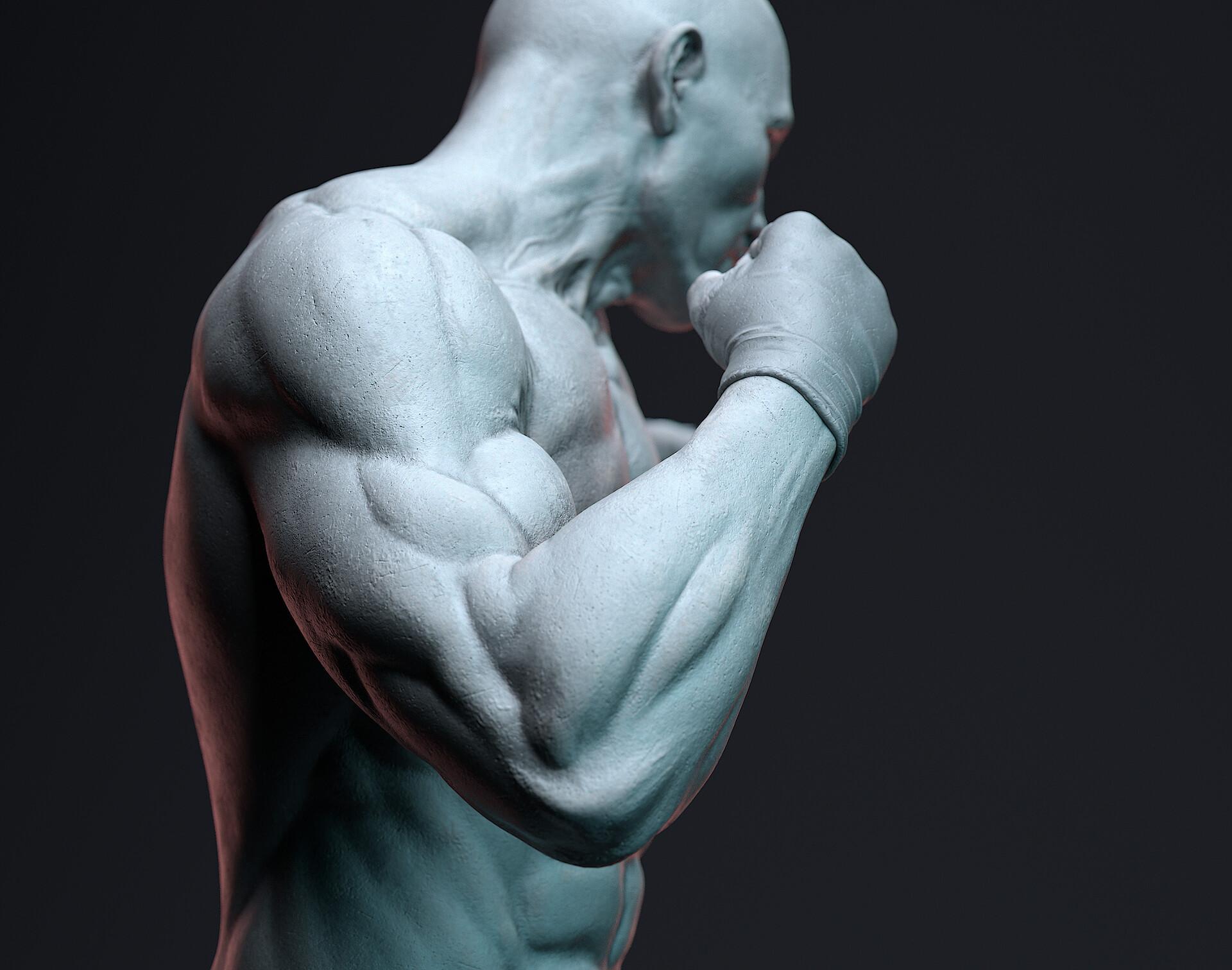 Tumen altangadas boxer 11