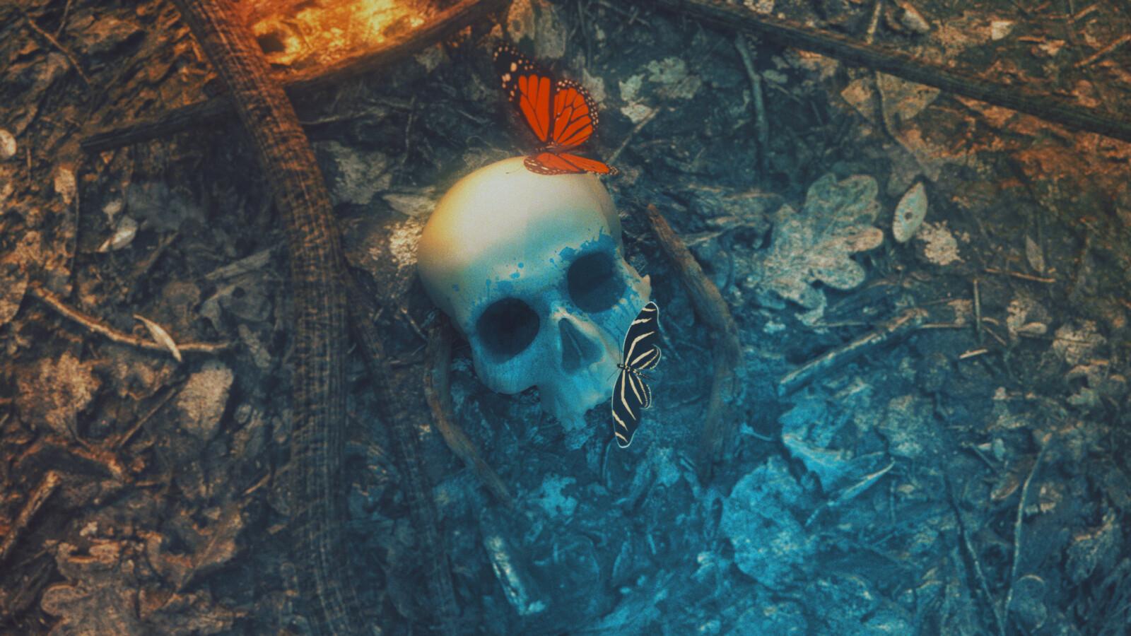 Skull in the woods