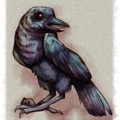 Ashley coulter raven watercolor
