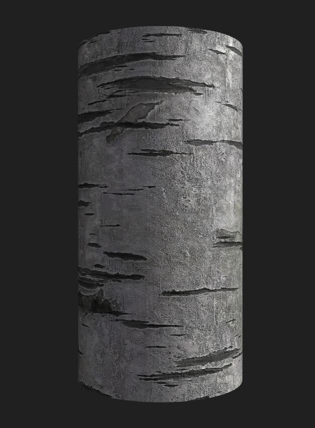 Birch Wood Bark