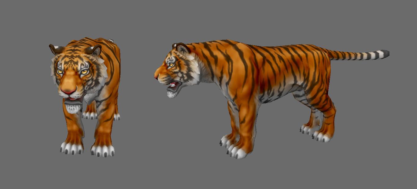 Tiger viewport view