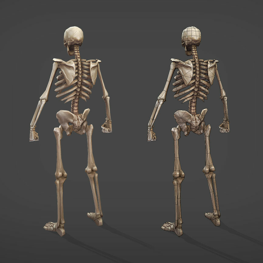 Viktor saghy skeleton back