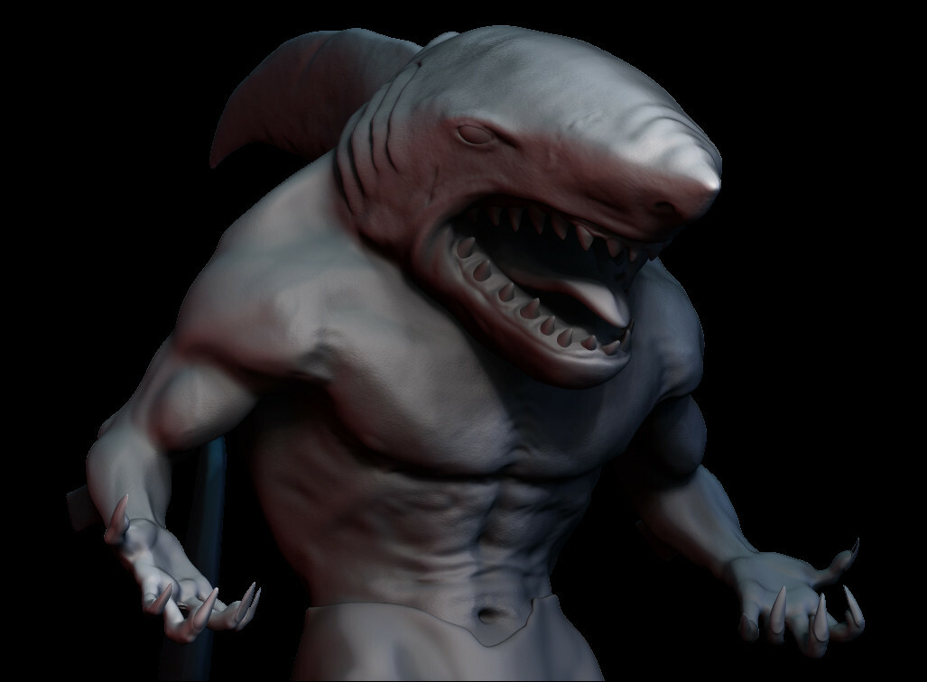 Mitchell sisson mitchell sisson shark