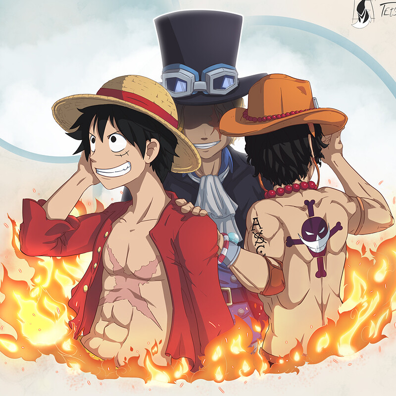 One Piece Fan Art