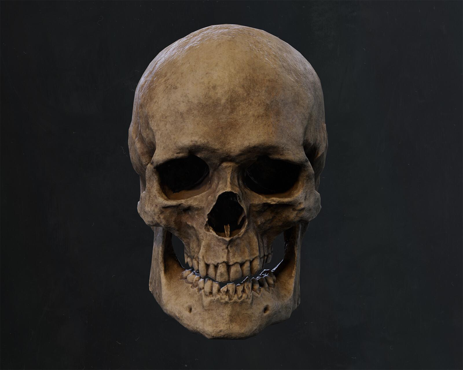 Ben nadler skull 002