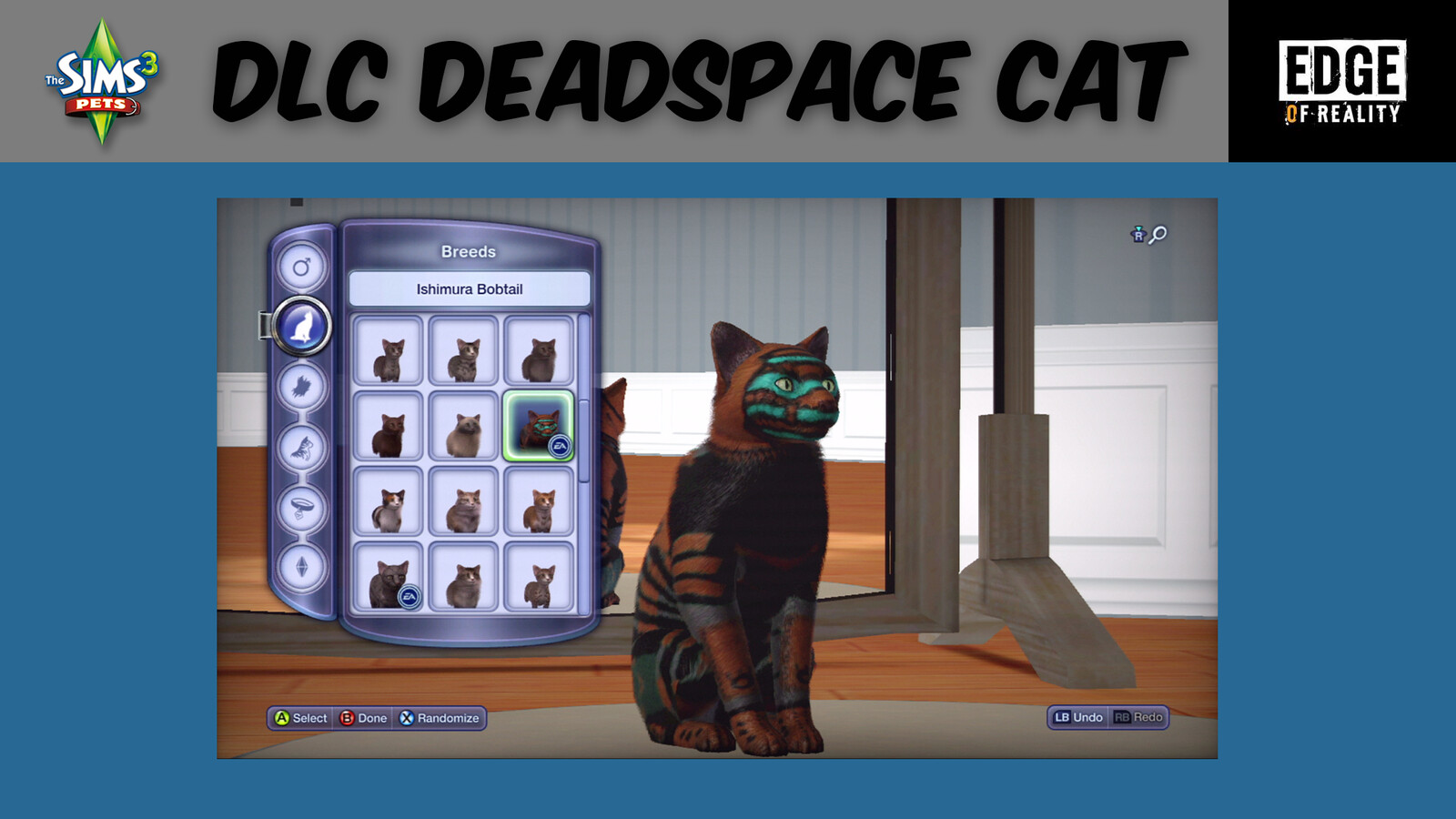 Responsible for pattern design for Dead Space Cat.