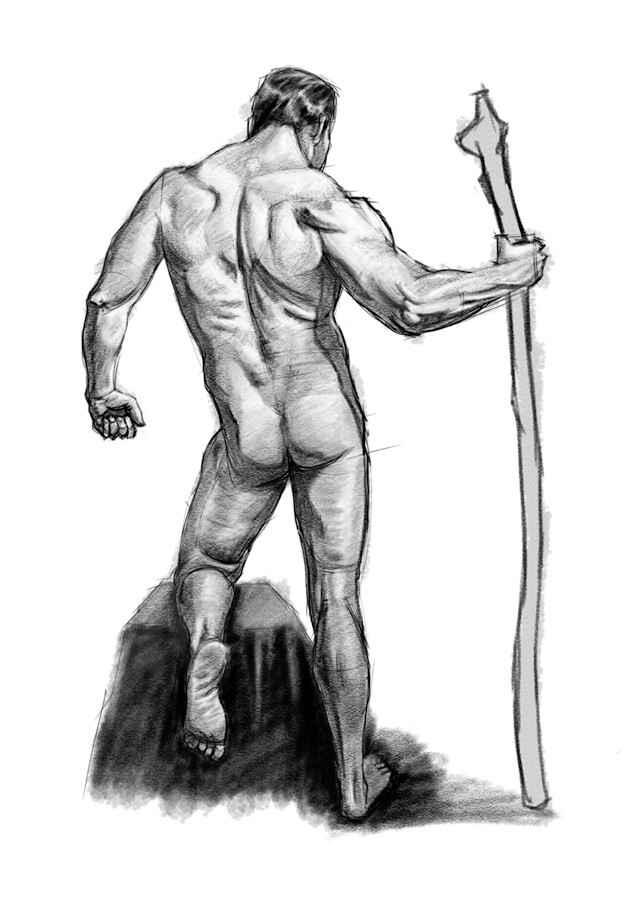 Anatomy Sketch Practice