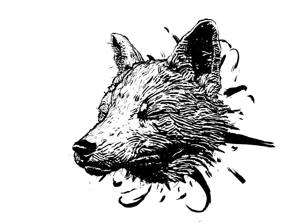 David hagemann fox34