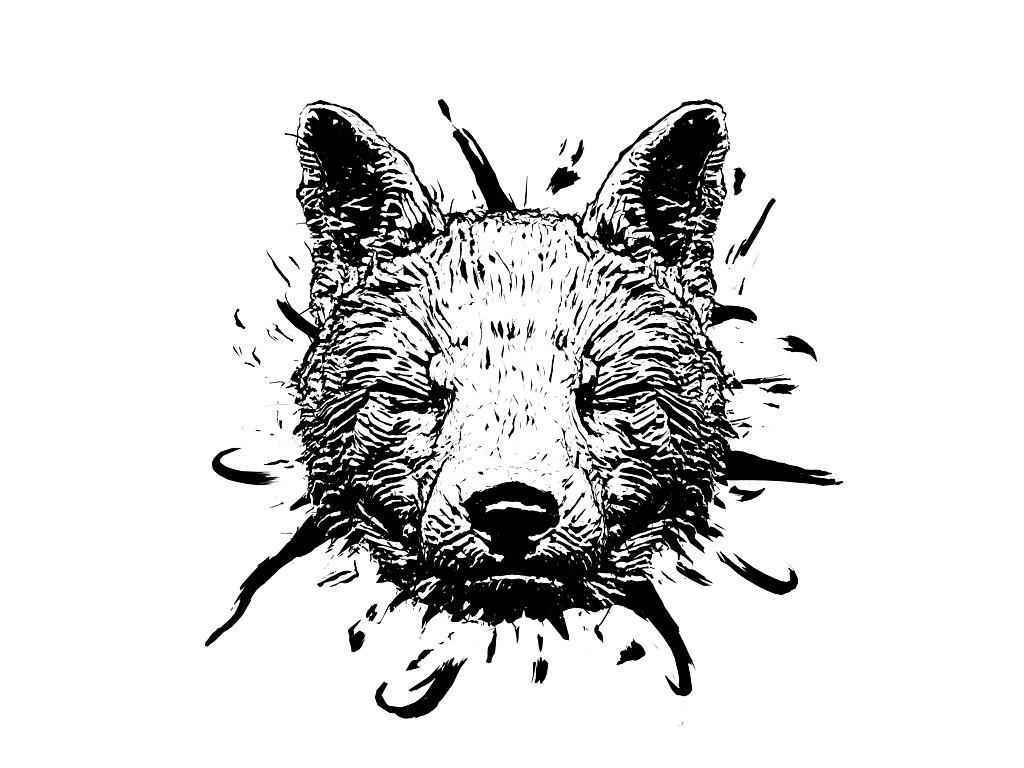 David hagemann foxfront