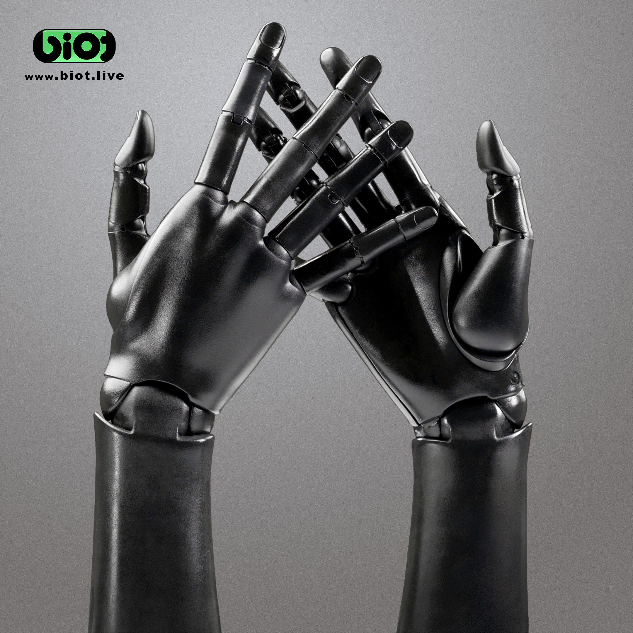 Pair of bionic hands