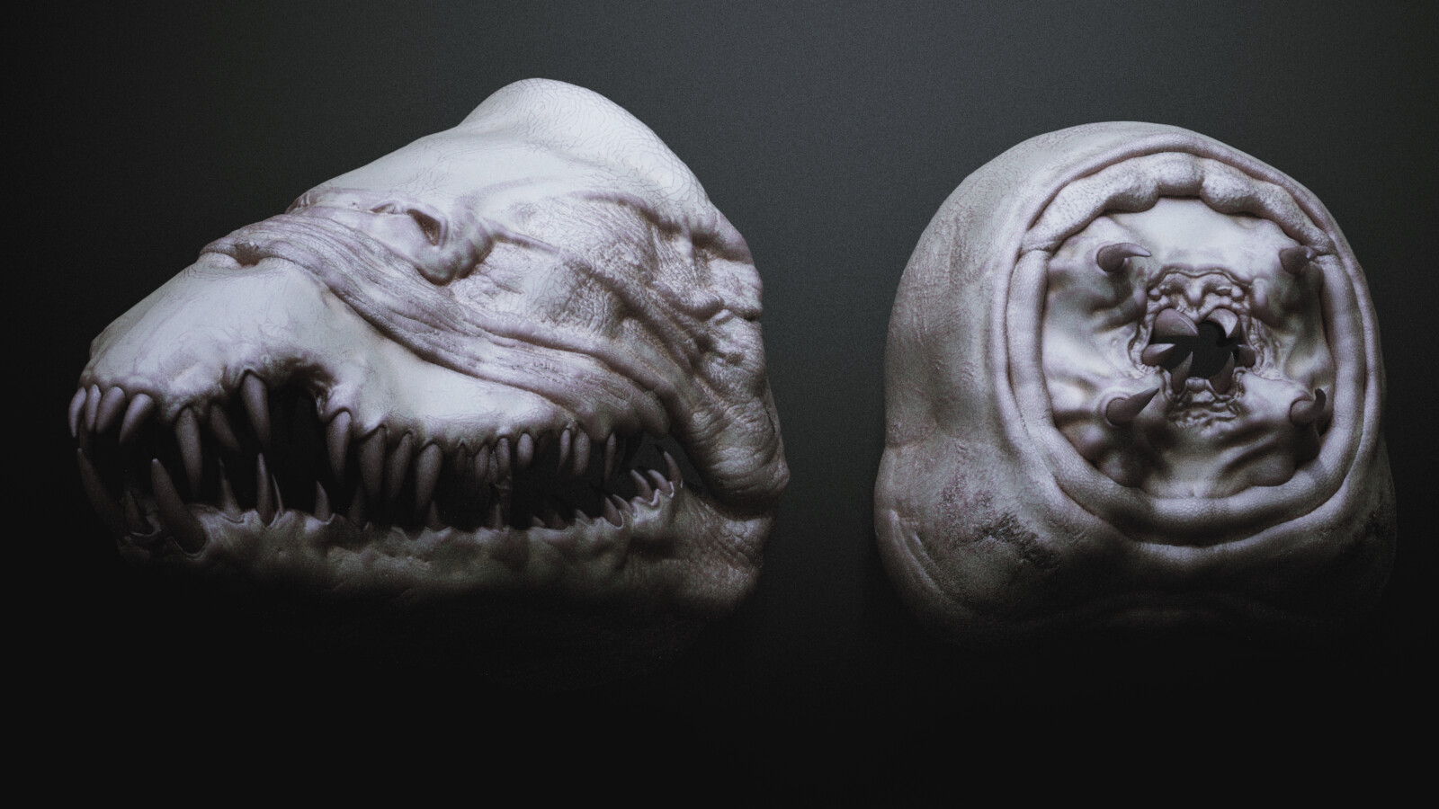Sarakh ■ Ragworm